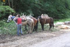 und-transport