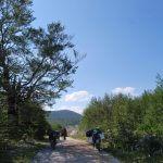 kroatien-schattenplatz-in-himmlicher-hoehe